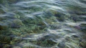 W górę, przejrzysta woda morska kiwa nad kolorową rafą koralową, odbija światło słoneczne w swój falach zbiory
