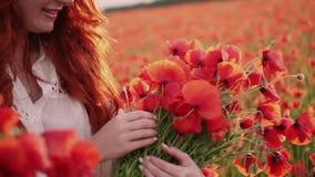 W górę ręki młodej miedzianowłosej kobiety robi bukietowi czerwoni makowi kwiaty, zwolnione tempo zbiory wideo
