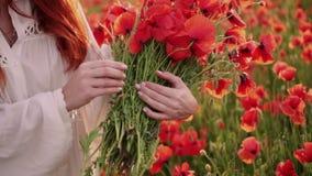 W górę ręki młodej miedzianowłosej kobiety robi bukietowi czerwoni makowi kwiaty, zwolnione tempo zdjęcie wideo