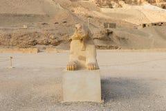 W g?r? s?awnego Egipskiego sfinksa w Luxor obrazy royalty free