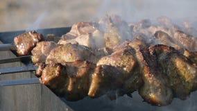 W górę wyśmienicie mięsnych plasterków na skewers smażył outdoors na grillu na słonecznym dniu Soczystego kebabu mięsny naczynie zdjęcie wideo