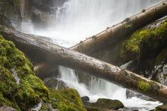 - w górę wodospadu Zdjęcia Stock