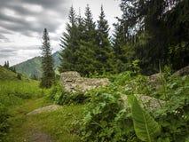 W górach Zdjęcie Royalty Free