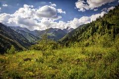 W górach Obraz Stock