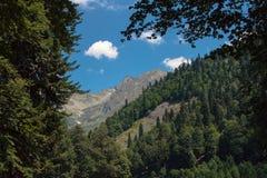 W górach zdjęcie stock