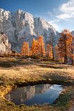 W górach jesień wieczór Fotografia Royalty Free