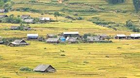 W górach ryżowi tarasy fotografia stock