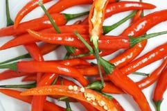 W g?r? czerwonego chili pieprzy na obrazy royalty free