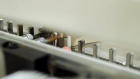 W g?r? maszyny z musztruje dla musztrowa? drewniane deski akcja Nowo?ytna automatyzuj?ca maszyna dla musztrowa? drewniani bary zbiory wideo
