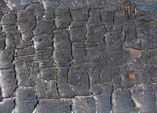 węgiel drzewny konsystencja Obraz Royalty Free