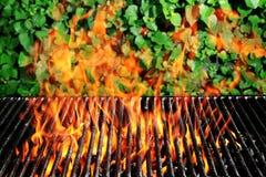 węgiel drzewny ogienia grill Fotografia Royalty Free