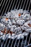 Węgla drzewnego grill Zdjęcia Stock
