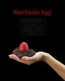 W gniazdeczku czerwony Wielkanocny jajko Zdjęcie Stock