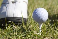 w golfa Zdjęcia Stock