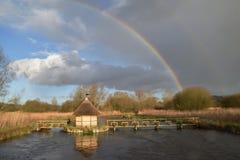 Węgorzowi oklepowie na rzeka tescie Hampshire UK Fotografia Royalty Free