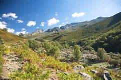 W gredos zielona dolina Avila Zdjęcie Royalty Free