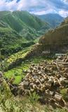 W Himalajach tradycyjna wioska Zdjęcie Stock