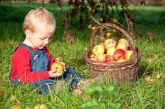 W jabłczanym sadzie śliczna chłopiec fotografia stock