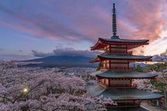 W Japonia czereśniowi okwitnięcia zdjęcie stock