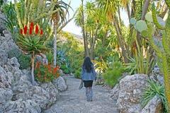 W Jardin Exotique Monaco Fotografia Royalty Free