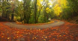 W jesień halna droga Zdjęcia Royalty Free