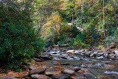 W jesień halny strumień zdjęcia royalty free