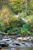 W jesień halny strumień obrazy royalty free