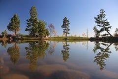 W jesień japończyka ogród Japoniskas sody zdjęcie stock