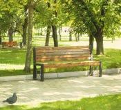 W jesień parkowa ławka Fotografia Stock