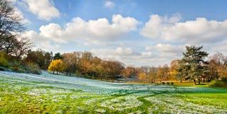 W jesień parku pierwszy śnieg. Panorama. Fotografia Stock