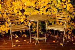 W jesień ogrodowy meble Zdjęcie Stock