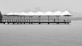 W&B at Hangzhou,China. Jinji lake at Hangzhou,China royalty free stock photography