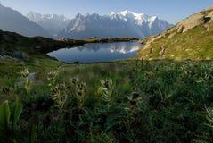 W Juliańskich alps TARGET665_0_ ścieżka Zdjęcie Royalty Free