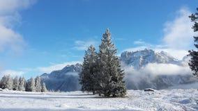 W Juliańskich alps TARGET665_0_ ścieżka Zdjęcie Stock