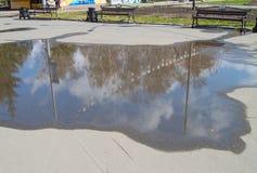 W kałuży asfalt odbijał niebo z chmurami i drzewami w parku obraz stock