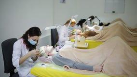 W kosmetologia pokoju wiele mistrzowie wzrastają rzęsy młode piękne dziewczyny zbiory
