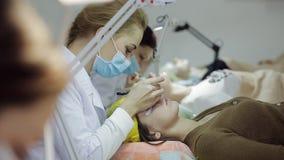 W kosmetologia pokoju wiele mistrzowie wzrastają rzęsy młode piękne dziewczyny zbiory wideo