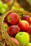 W Koszu zdrowi Organicznie Jabłka. Zdjęcie Stock