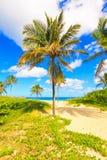 W Kuba piękna plaża zdjęcie stock