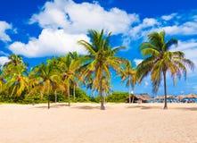 W Kuba tropikalna plaża obraz stock