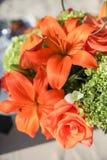 W kwiacie pomarańczowi kwiaty Zdjęcie Royalty Free