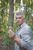 W lesie, dorosły mężczyzna trzyma białej pieczarki w jego rękach zdjęcia stock