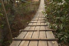 W lesie zawieszenie most obrazy royalty free