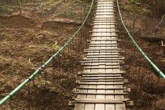 W lesie zawieszenie most zdjęcie stock