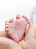 W macierzystych rękach dziecko cieki Nowonarodzona dzieciak stopa Obraz Stock