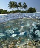 W Maldives tropikalna laguna Obraz Royalty Free