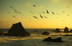W Malibu plaży olbrzymia skała obraz royalty free