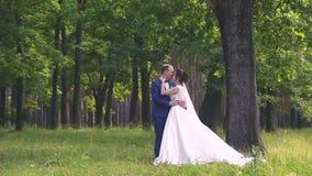 W miłości młoda ślub para chodzi w parku Mąż z jego żoną w białej pannie młodej jest ubranym spacer w naturze zdjęcie wideo