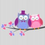 W miłości par sowy Zdjęcie Royalty Free