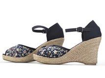 W mody pojęciu żeńscy buty Zdjęcia Stock